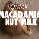Starr-macadamia-nut.jpg