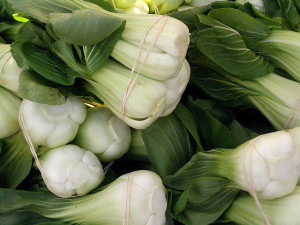 Heads of Bok Choy